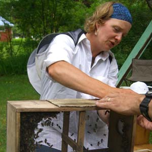 Instructor: Erin MacGregor-Forbes, EAS Master Beekeeper, President, Maine State Beekeepers Association.