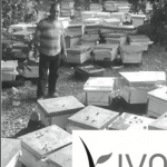 Davida's first Kiva micro-loan recipient turns out to be an appreciative beekeeper in Lebanon.