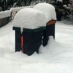 February 2011 - Hives in Snow