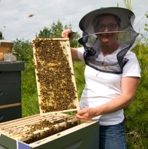 Erin Forbes, President Maine State Beekeepers Association