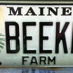 beekpr-licence-plate-featured-images