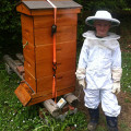 A Junior Beekeeper in Maine