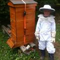 A Junior Beekeeper in Maine