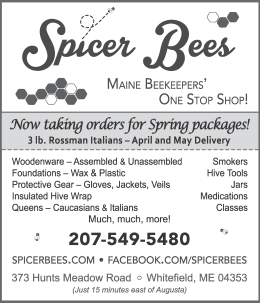 Spicer Bees 2018