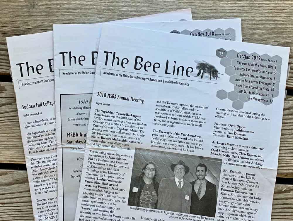 MSBA Bee Line