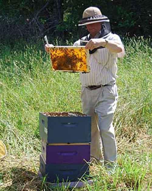 Larry Peiffer EAS Master Beekeeper