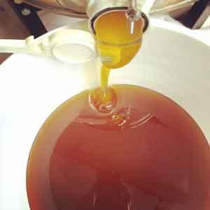 Honey Extracting