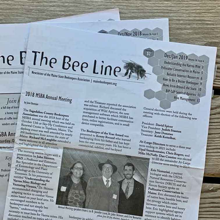 MSBA bee line newsletter