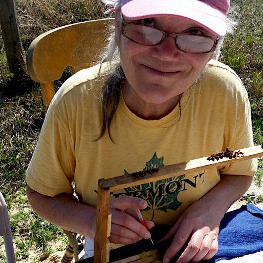 Karen Thurlow queen grafting