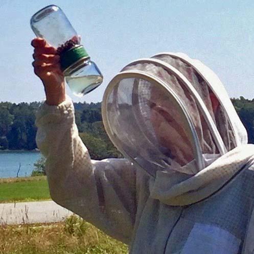 Alcohol wash mite test
